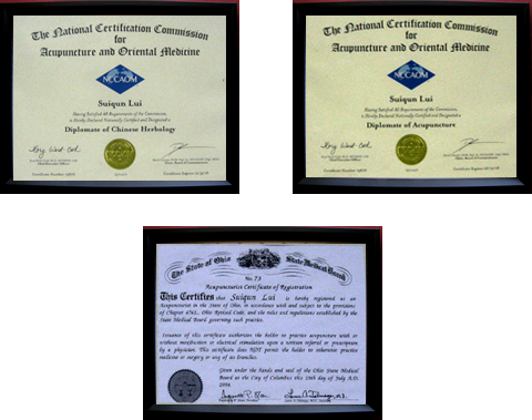 Cleveland Acupuncturist Diploma